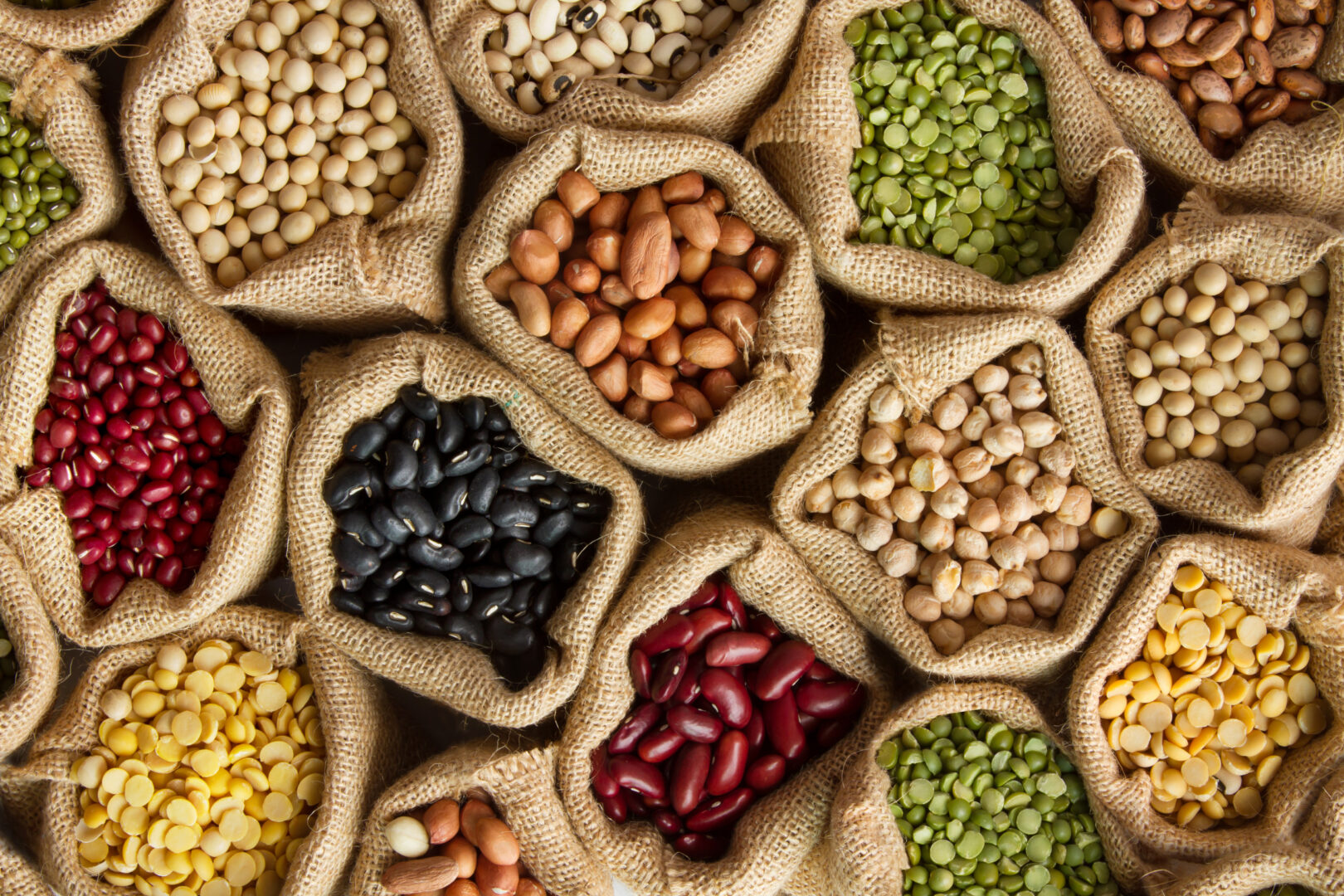 How pulses are powering global alt protein innovation